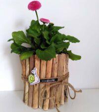 Blumengeschenk mit Schnecke