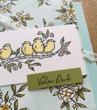 stampin up produktreihe vogelgarten
